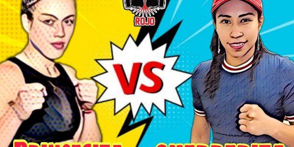 Bermúdez vs Torres: La Pelea