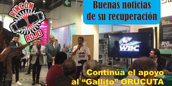 """""""El Gallito"""" Orucuta"""