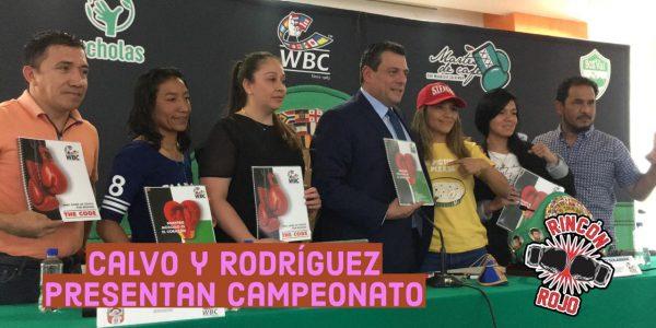 Pelea de campeonato internacional